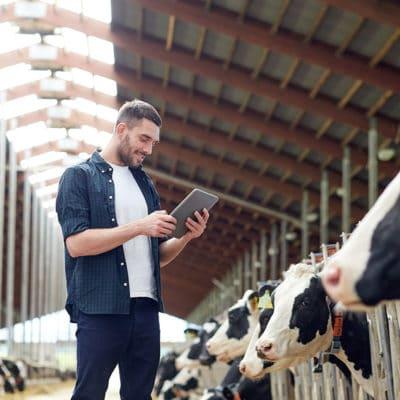 Agriculture, élevage