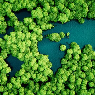 Écologie, environnement